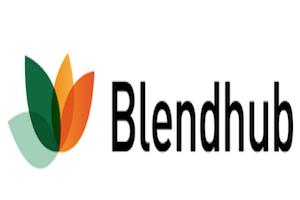 Emprendimiento enfocado al bien común, Blendhub