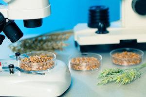 Nueva regulación de la UE sobre controles oficiales de alimentos y piensos, y mucho más