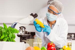 Elementos clave el reglamento (UE) 2015/2283, relativo a los nuevos alimentos