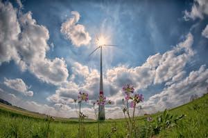 Estrategia de la CE para una Economía Sostenible